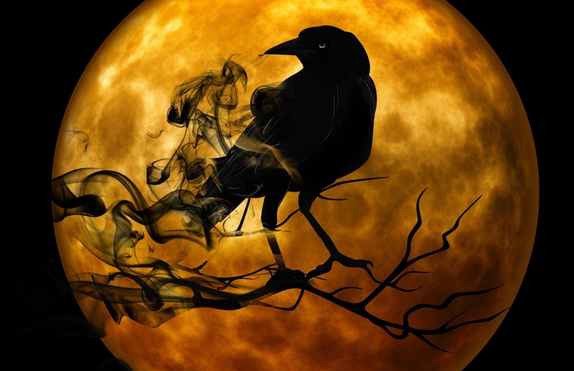 black raven against yellow moon