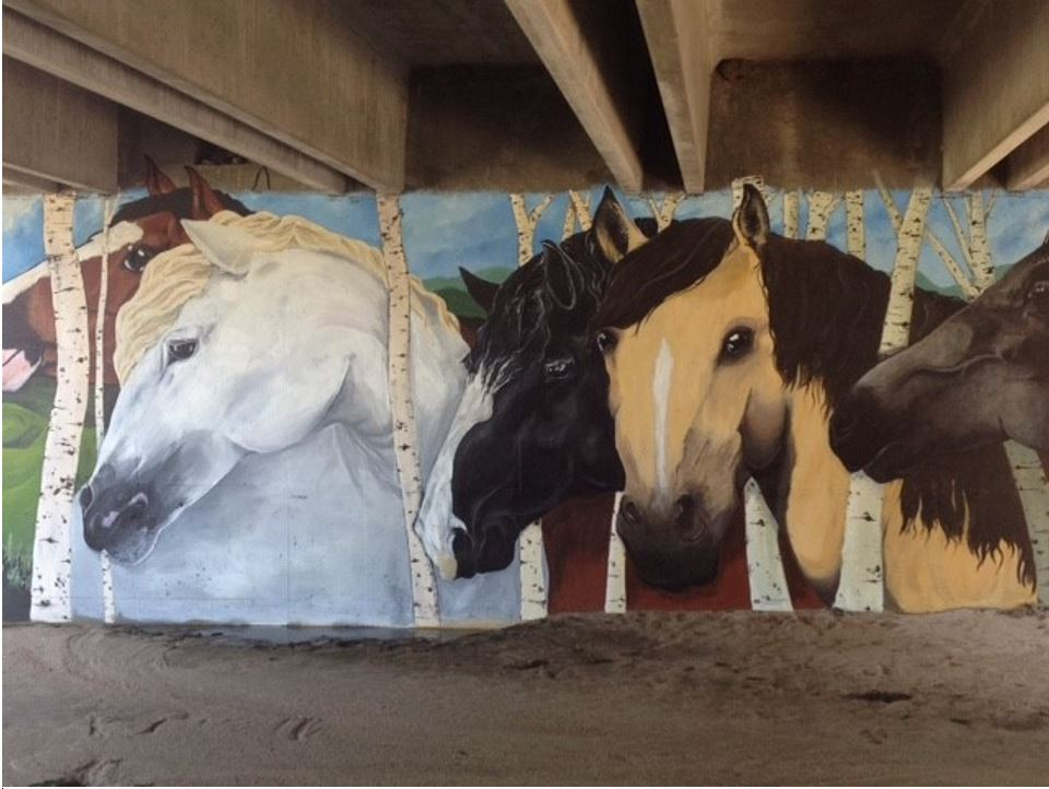 Horse Mural in Parker, CO