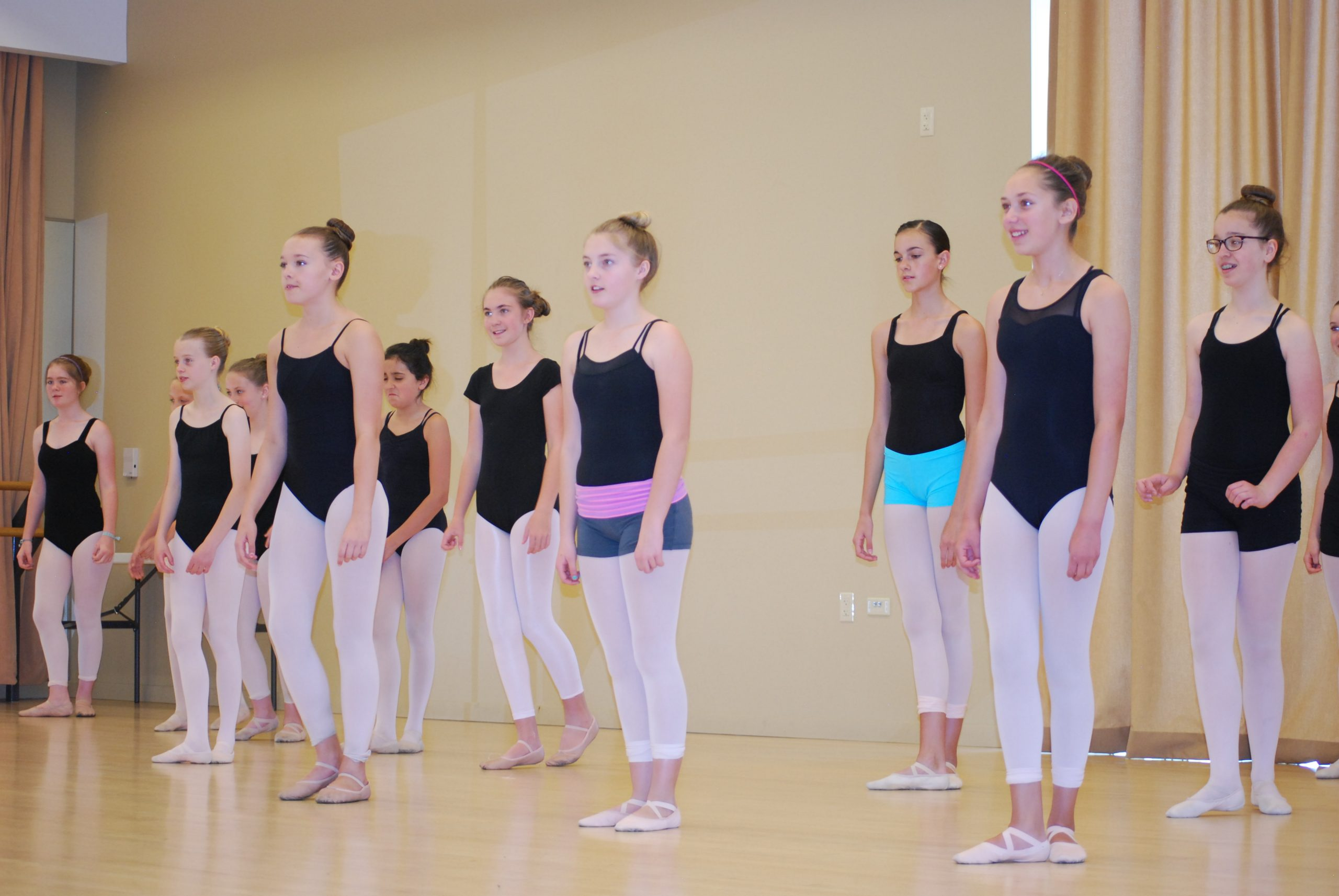 Advanced/Level 1 All Styles Dance Camp