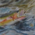 Emerged Trout by Jack Baile, 6 x 4, Soft Pastel