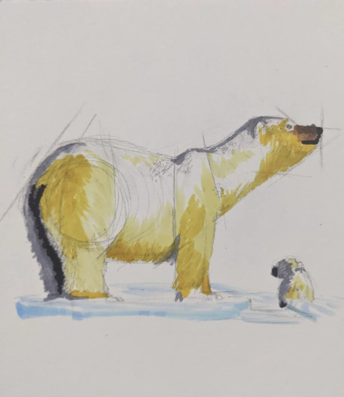 Polar Bear on Ice by Caleb Arkell, 6 x 8, Pencil and Markers